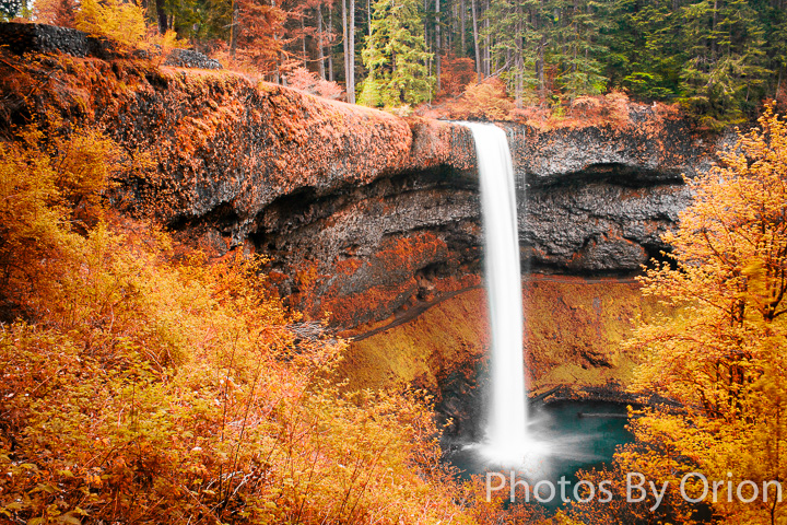South Silver Falls Gold