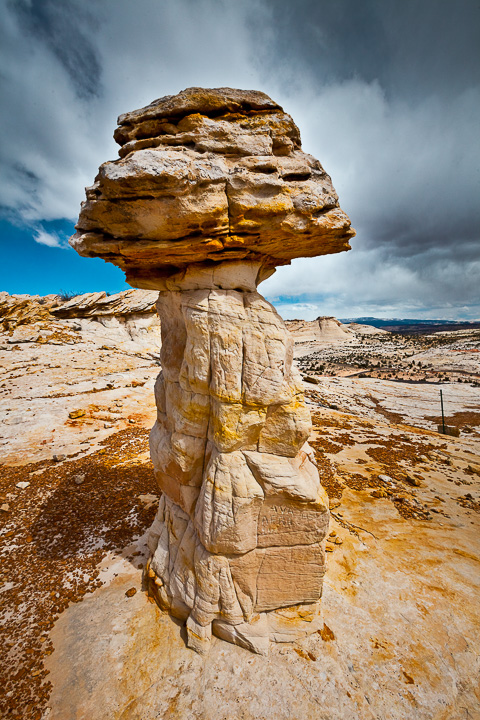 Lonely Hoodoo