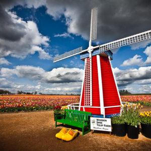 Wooden Shoe Windmill