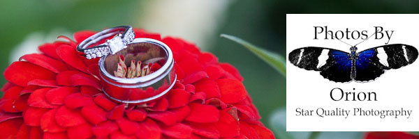 Wedding Rings displayed on a flower.