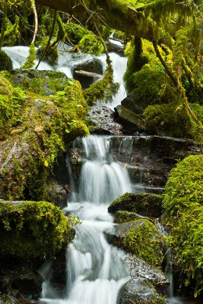 Columbia Cascades