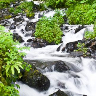 Latourell Creek
