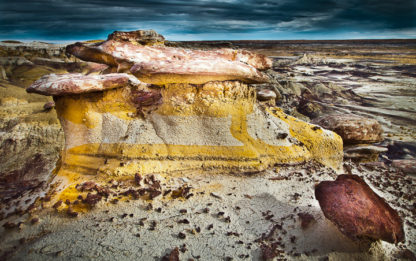 New Mexico Yellow